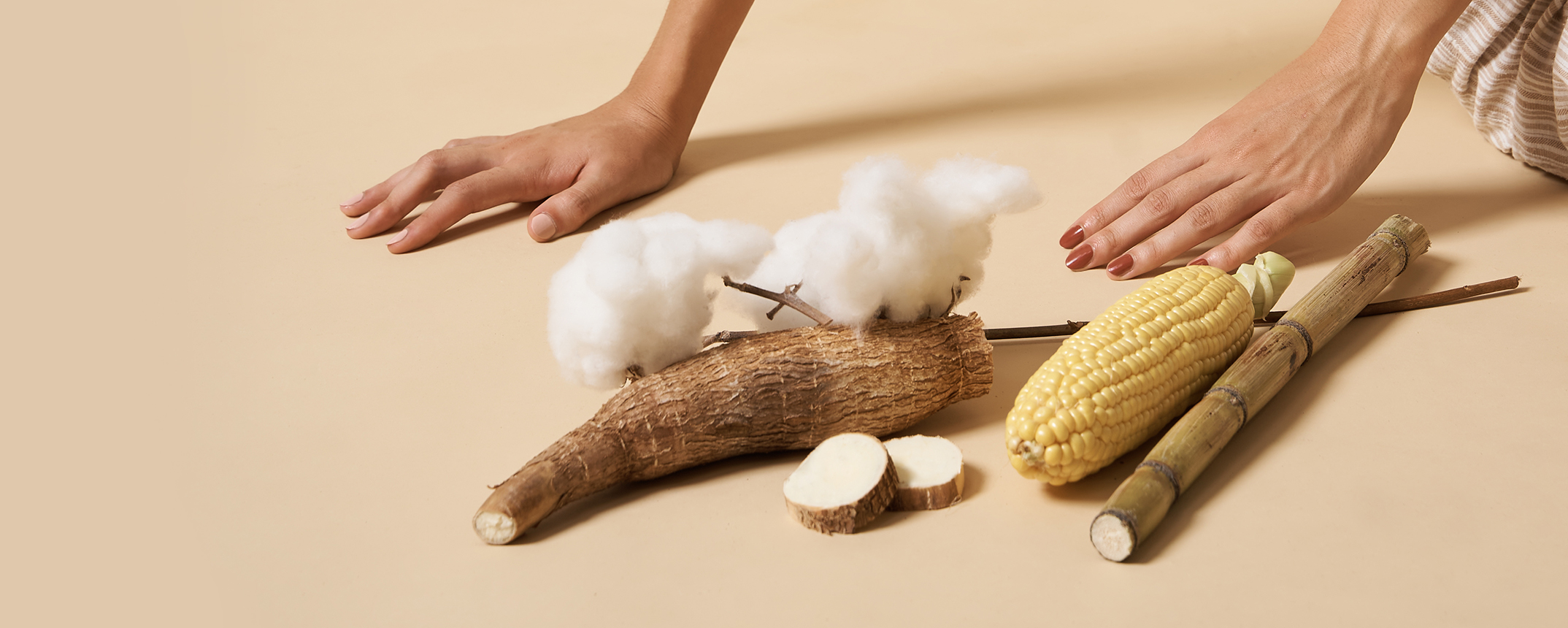 woman's hands on the floor wearing red nail polish by sienna next to cotton, sugar cane, corn and cassava on beige background